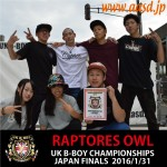 http://www.aasd.jp/wp-content/uploads/RAPTORES-OWL.jpg