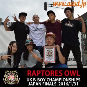 RAPTORES-OWL
