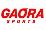 http://www.aasd.jp/wp-content/uploads/gaora-1.jpg